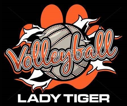 tiger volleyball (2)